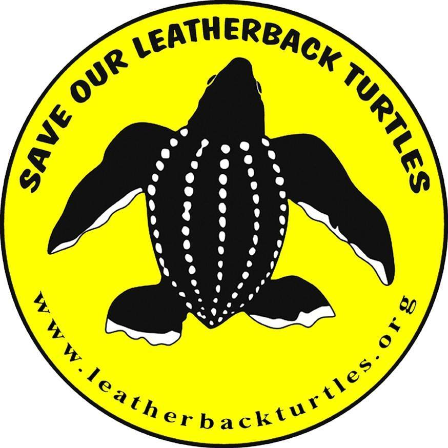 Save Our Leatherback Operation (SOLO)